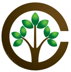 Central Tree Care LTD