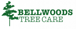Bellwoods Tree Care