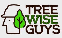 Tree Wise Guys