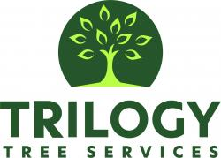 Trilogy Tree Services Ltd.