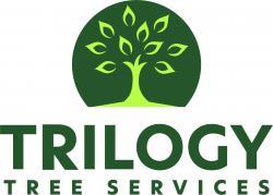 www.trilogytree.ca