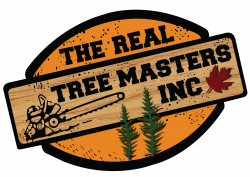 https://www.therealtreemasters.ca