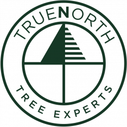 True North Tree Experts